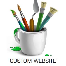 Custom website designing in Jaipur
