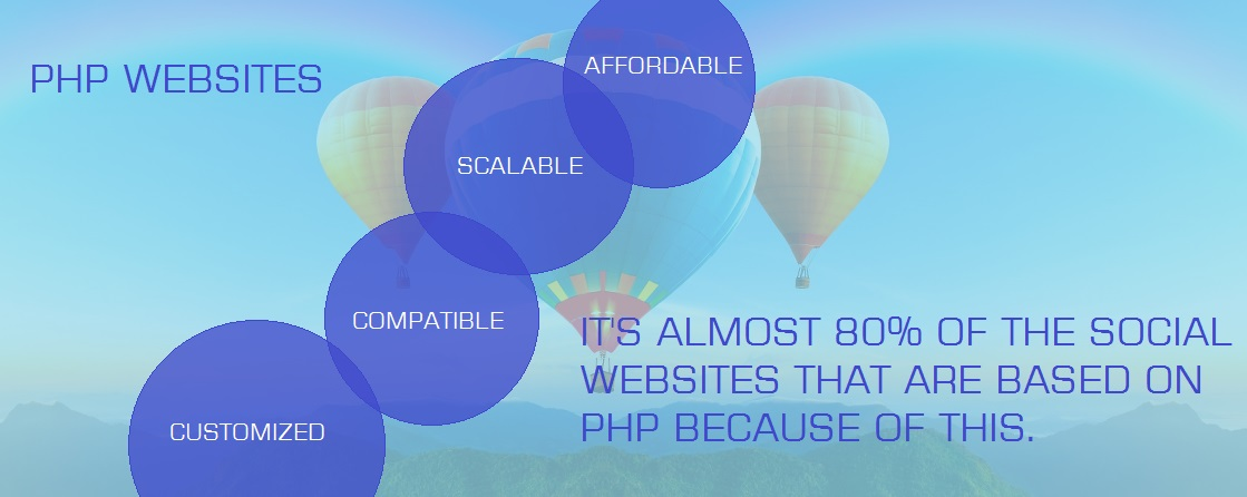 Professional website development in Jaipur