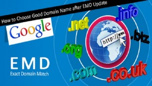 Google-EMD-SEO-update-Thoughtfulminds