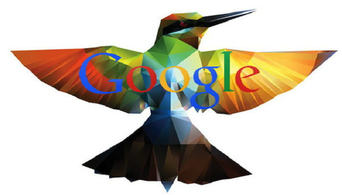google hummingbird update-Thoughtfulminds