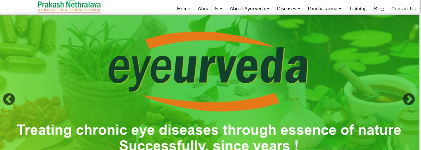 Prakash nethralaya homepage-hospital website development