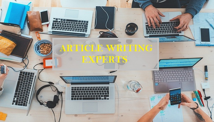 article writing experts-ThoughtfulMinds