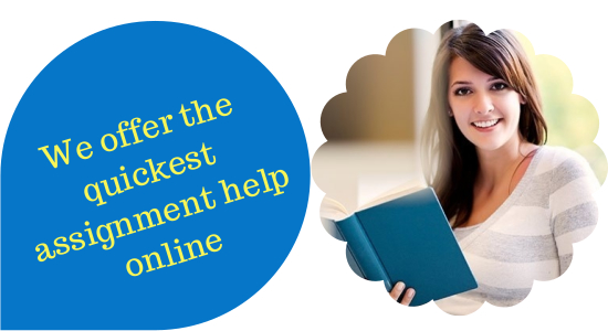 Assignment Help In India