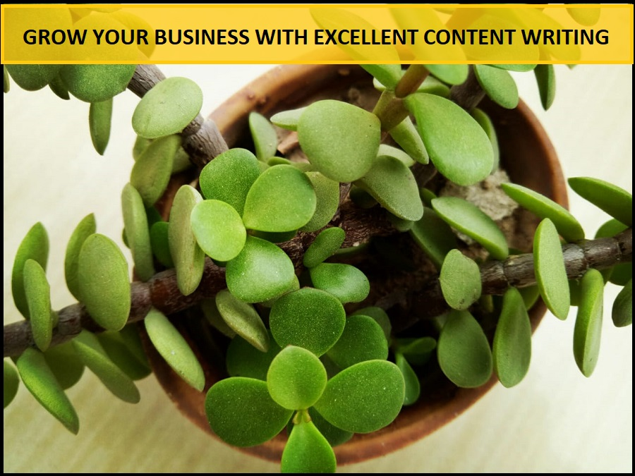 Grow Your Business With Excellent Content Writing Services - Header - ThoughtfulMinds