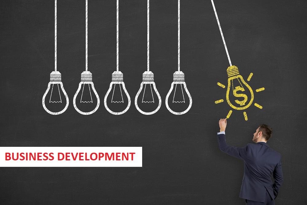 Business Development Online Assignment Help