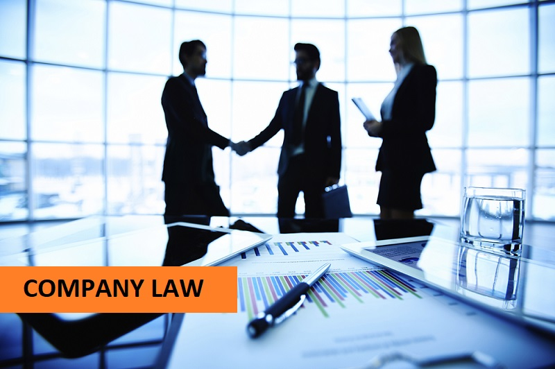 Company Law Assignment Help